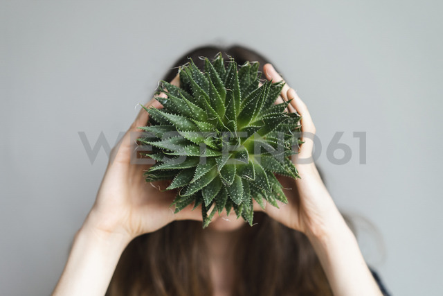 Woman holding plant in front of her face - AFVF01545