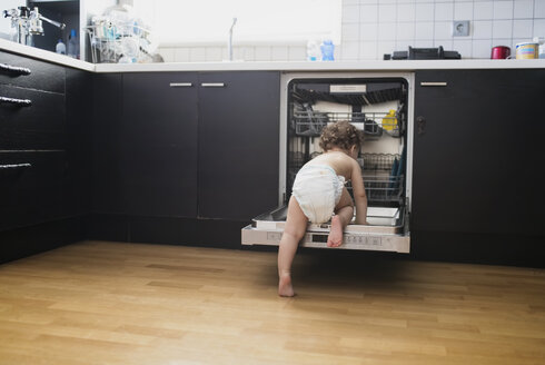 Back view of baby boy wearing diaper exploring dishwasher in the kitchen - AZOF00012