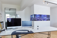 Interior of a modern office with aquarium - RHF02108