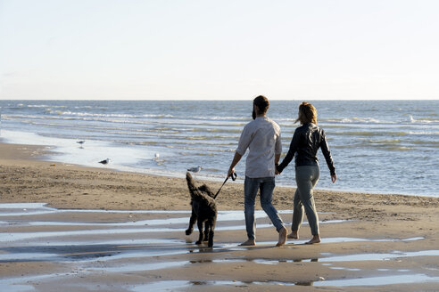 Young couple walking with their dog on the beach - HHLMF00446