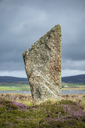 Great Britain, Scotland, Orkney, Mainland, Ring of Brodgar, neolithic stone circle, stone - ELF01919
