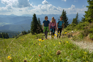 Germany, Bavaria, Brauneck near Lenggries, young friends hiking in alpine landscape - LBF02084