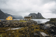 Norway, Lofoten, remote yellow house at rocky coast - KKAF01869