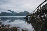 Norway, Senja island, man standing on a jetty at the coast - KKAF01917