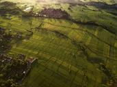 Indonesia, Bali, Kedungu, Aerial view - KNTF01543