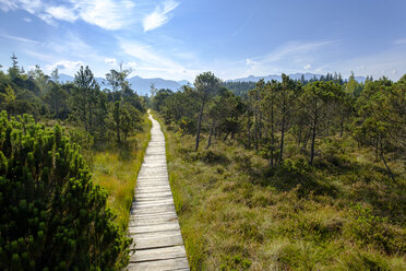 Germany, Bavaria, Murnauer Moos, Wooden plank path - LBF02099