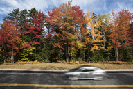 Fall foliage along the Kancamagus Highway in New Hampshire - AURF05081