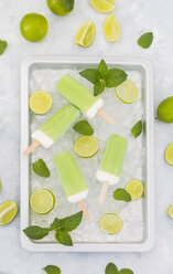 Lime mint popsicles, slices of limes and mint leaves on crushed ice - JUNF01255