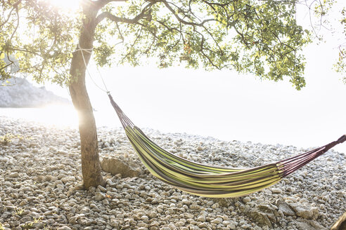 Croatia, Cres Island, empty hammock on a beach at backlight - JESF00171