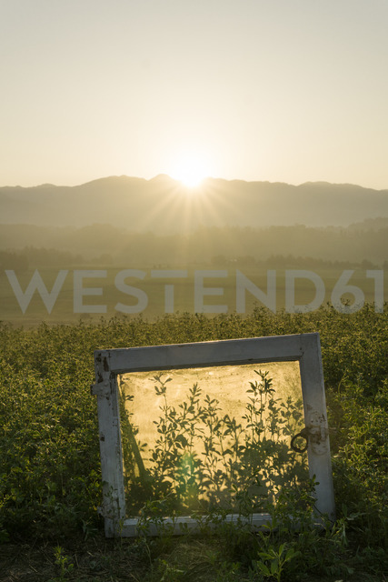 Italy, Tuscany, Borgo San Lorenzo, sunrise above rural landscape with window frame in field - FBAF00090