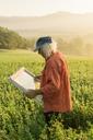 Italy, Tuscany, Borgo San Lorenzo, senior man holding window frame in field at sunrise - FBAF00093
