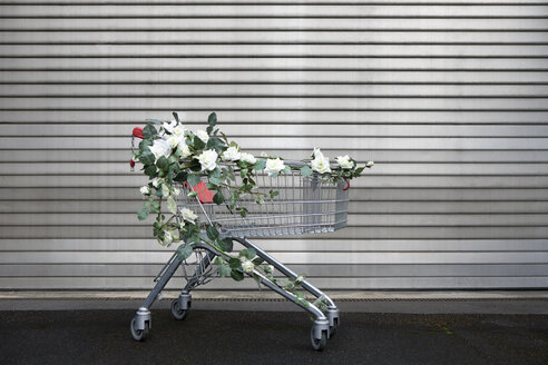Shopping cart decorated with white artificial flowers - PSTF00172