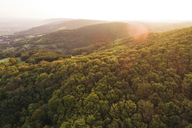 Austria, Lower Austria, Vienna Woods, Biosphere Reserve Vienna Woods, Aerial view of forest at sunrise - HMEF00004