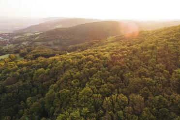 Austria, Lower Austria, Vienna Woods, Biosphere Reserve Vienna Woods, Aerial view of forest at sunrise - HMEF00004
