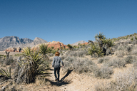 Rear view of boy walking on desert against clear blue sky at Joshua Tree National Park during sunny day - CAVF48817