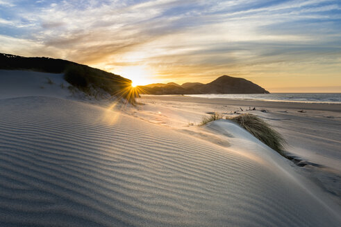 New Zealand, South Island, Puponga, Wharariki Beach, dunes at sunset - MKFF00433