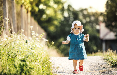 Portrait of baby girl walking outddors in summer - HAPF02735