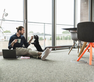 Young businessman with laptop sitting on the floor in office playing with dog - UUF15220