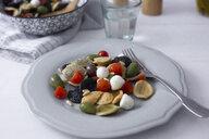 Mediterranean orecchiette with tomato, olives, mozzarella - GIOF04543