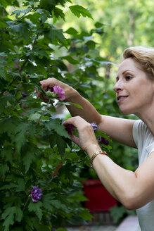 Gardening woman - HHLMF00498