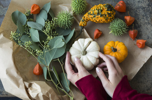 Autumnal decoration, woman's hand taking ornamental pumpkin - JUNF01322