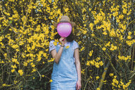 Playful young woman holding pink helium balloon with hat against face while standing by yellow blossoms at park - CAVF49017