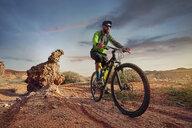 Hiker mountain biking at desert against sky during sunset - CAVF49098