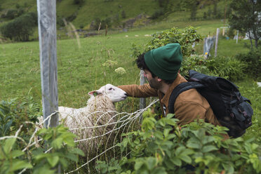 Young man with backpack petting sheep on pasture - KKAF02271