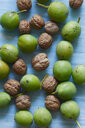 Peeled and unpeeled walnuts - JTF01090