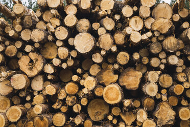 Stack of wood - KKAF02381