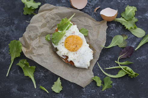 Fried egg on slice of brown bread coated with paprika cream - JUNF01364
