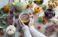 Woman warming her hands on cup of tea in autumn - JUNF01370