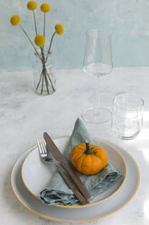 Autumnal table decoration with  decorative gourd - JUNF01379