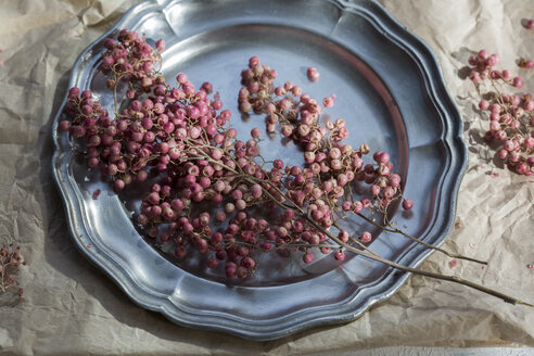 Pink peppercorns on tin plate - JUNF01382