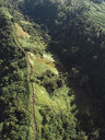 Indonesia, Bali, Ubud, Aerial view of path at hills - KNTF02001