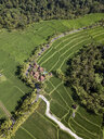 Indonesia, Bali, Ubud, Aerial view of rice fields - KNTF02004