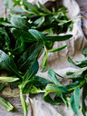 Picked mint leaves, close-up - CUF44590