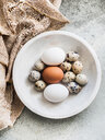 Variety of birds eggs in a bowl, overhead view - CUF44935