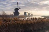 Netherlands, Holland, Rotterdam, Kinderdijk - RPSF00243