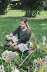 Young woman harvesting pumpkins in the garden - ALBF00610