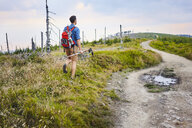 Back view of man hiking in the mountains - BSZF00756