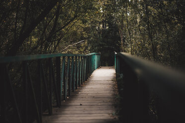 Wooden bridge in forest - OCAF00370