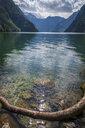 Germany, Upper Bavaria, Lake Koenigssee - HAMF00404