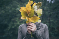 Portrait of teenage girl with leaves - INGF00701