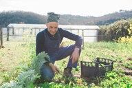 Man weeding vegetable garden - CUF46236