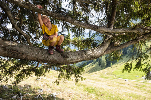 Portrait of smiling girl crouching in a tree - HAMF00421