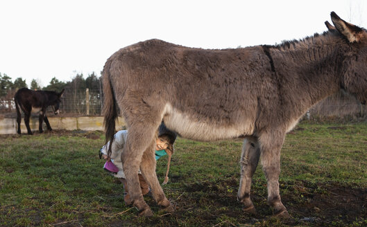 Cute girl hiding under donkey in pasture - FSIF03314
