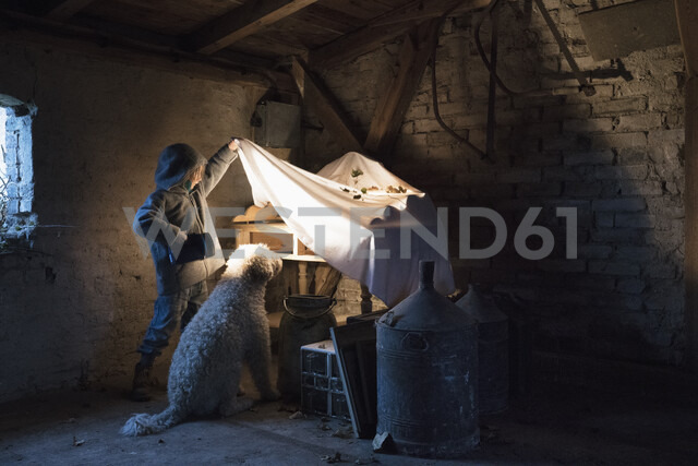 Girl and dog with flashlight peeking under cloth in carpentry workshop - FSIF03350