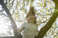 Playful girl climbing spring tree - FSIF03353