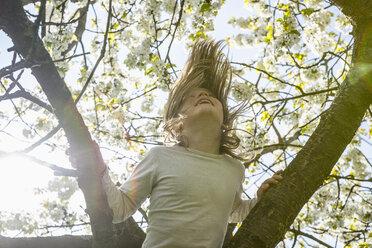 Playful girl climbing spring tree - FSIF03353